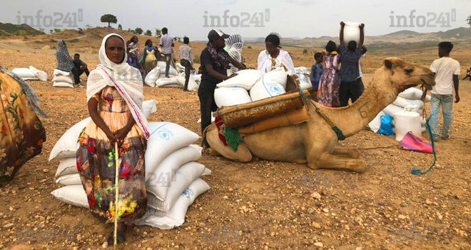 Ethiopie: Accusés d'ingérence, 7 dirigeants d'agences de l'ONU sommés de quitter le pays