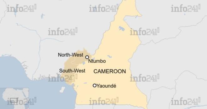 Au moins 22 morts dont 14 enfants dans l'attaque d'un village au Cameroun